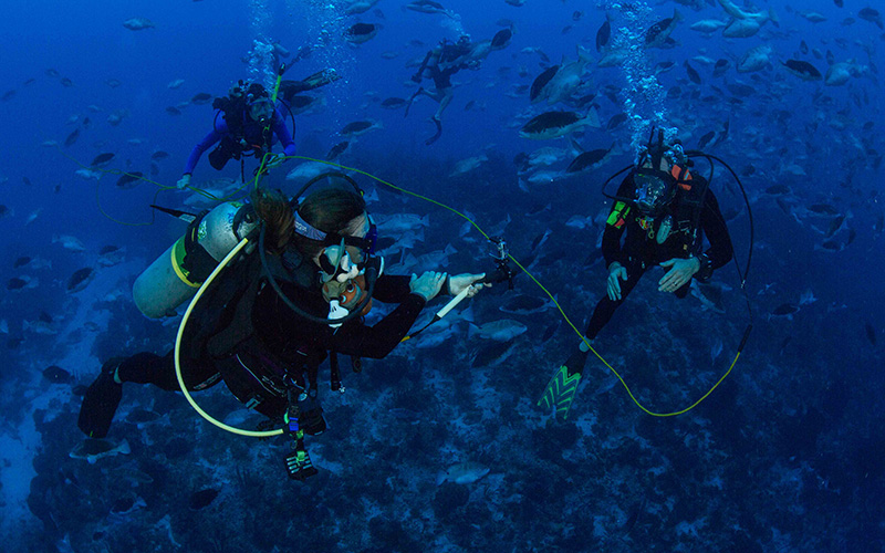 Brice Semmens (right) participates in a Google Hangout at a grouper spawning aggregation site.