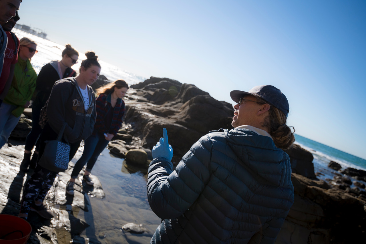 Undergraduate students exploring the tide pools near Scripps