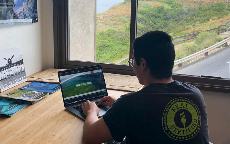 A young man works on a laptop in an office overlooking a verdant canyon and the ocean.