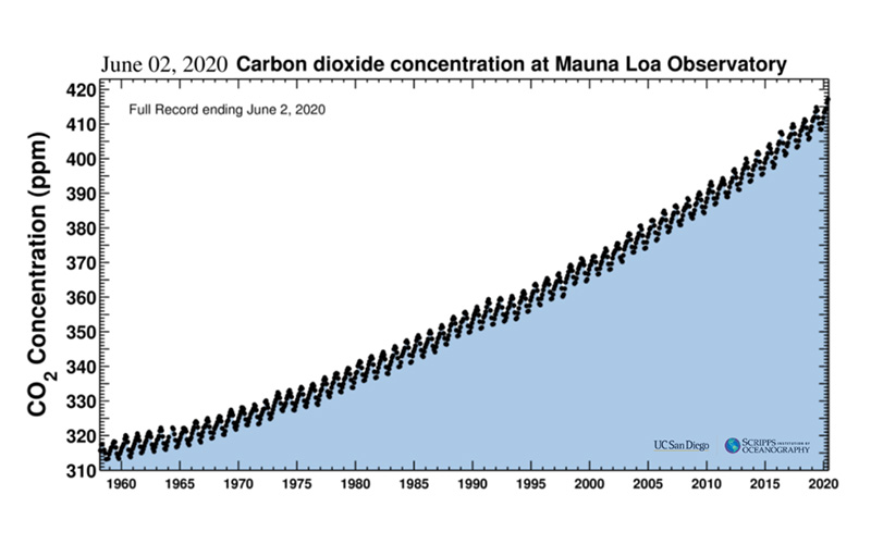 Rise Of Carbon