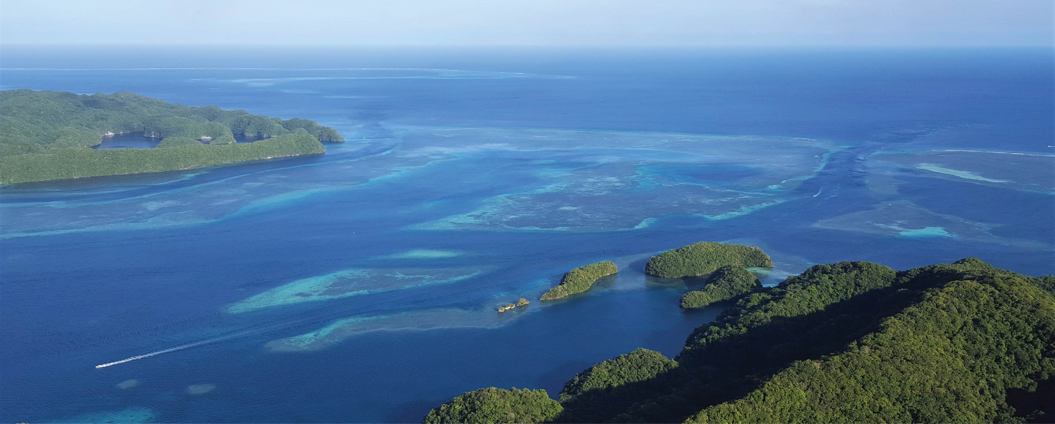 Ngederrak Reef, a marine protected area adjacent to the main harbor of Palau.  Photo: Travis Schramek
