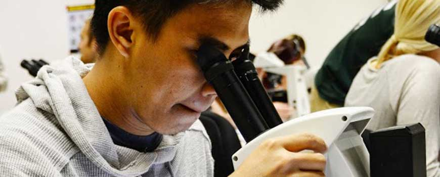 Hafizh Adyas looks at a sample through a microscope.