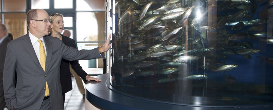Prince Albert visits Birch Aquarium at Scripps