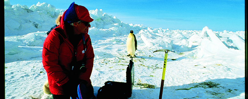 Jerry Kooyman studying penguins in Antarctica