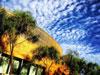 Scripps Forum with blue sky