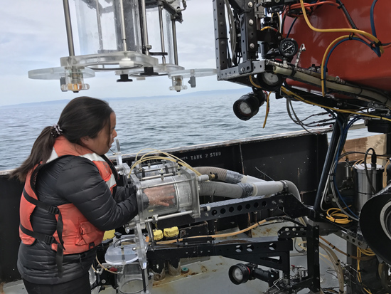 Anela Choy on the boat. Image courtesy of the Monterey Bay Aquarium Research Institute