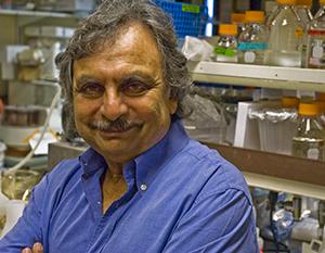 Scripps microbiologist Farooq Azam