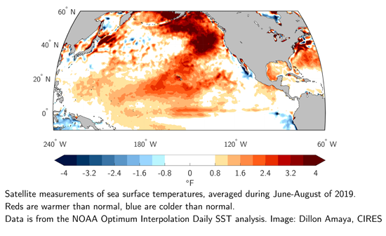 Satellite measurements of sea-surface temperatures, averaged during June-August of 2019. Reds are warmer than normal, blue are colder than normal. Data is from the NOAA Optimum Interpolation Daily SST analysis. Image: Dillon Amaya, CIRES