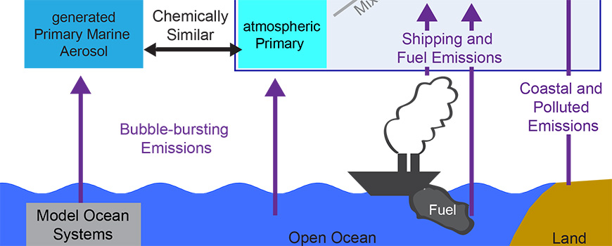 Schematic of the pathways of natural and human-produced aerosols from the marine environment