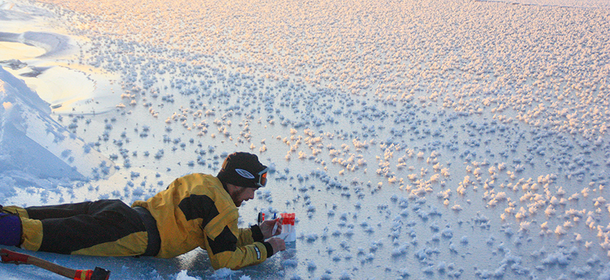 "Scripps' Jeff Bowman collects ""frost flowers"" at a site off Greenland, 2009. Photo: Matthias Wietz"