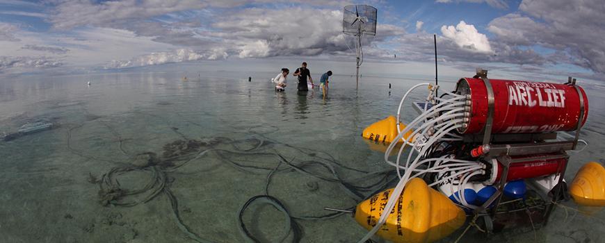 Reef sensor network