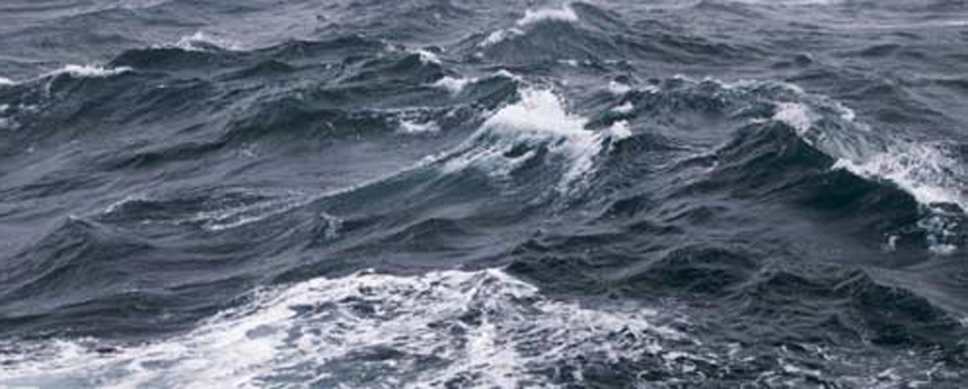 Oceans on the Precipice: Scripps Scientist Warns of Mass Extinctions and 'Rise of Slime'