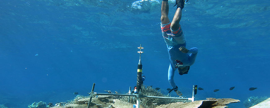 Former Scripps graduate student Yuichiro Takeshita with BEAMS on Palmyra coral reef