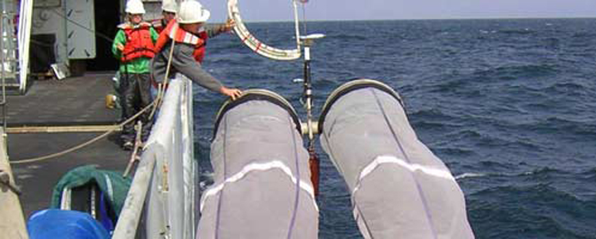 Scripps Scientists Peg Wind as the Force Behind Fish Booms and Busts