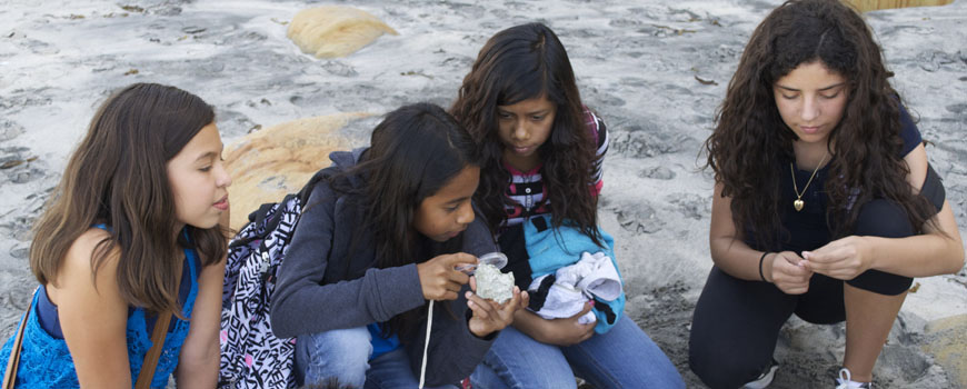 A group of young girls examine rocks on the beach.