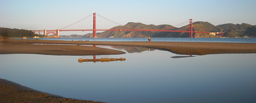 Estuary at San Francisco Bay. Photo David Okey/NOAA Coastal Service
