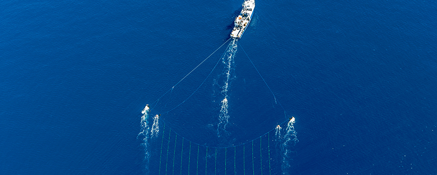 Scripps research vessel New Horizon tows a hydrophone array over the offshore fault