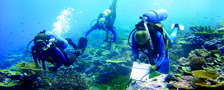 Scientists survey coral in the Line Island chain. Photo: Jim Maragos, US Fish and Wildlife Service