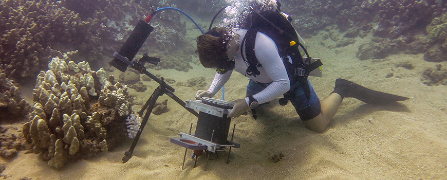 Scripps graduate student Andrew Mullen positions the Benthic Underwater Microscope to study coral competition.