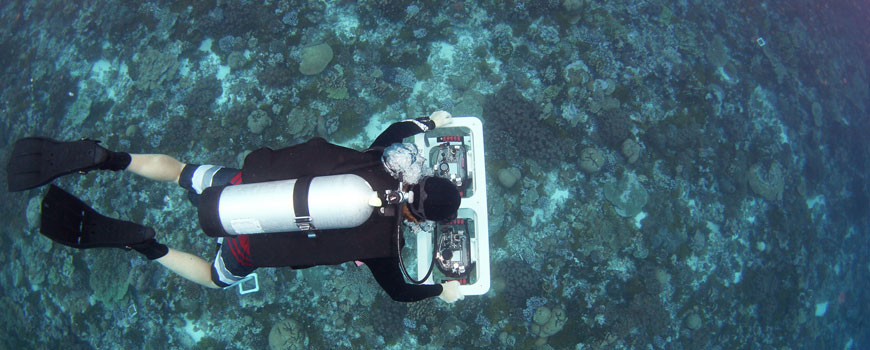 Gareth Williams surveys reefs at Palmyra Atoll