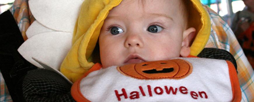 Enjoy a 'Spook-tacular' Halloween with Birch Aquarium at Scripps