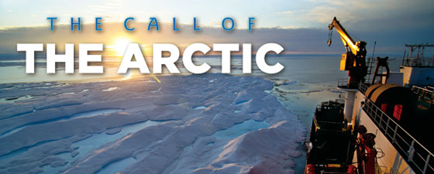 The Call of The Arctic