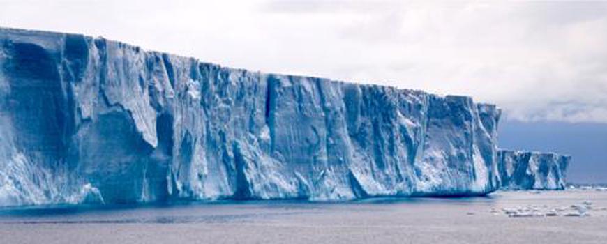 Antarctic Icebergs: Hotspots of Ocean Life