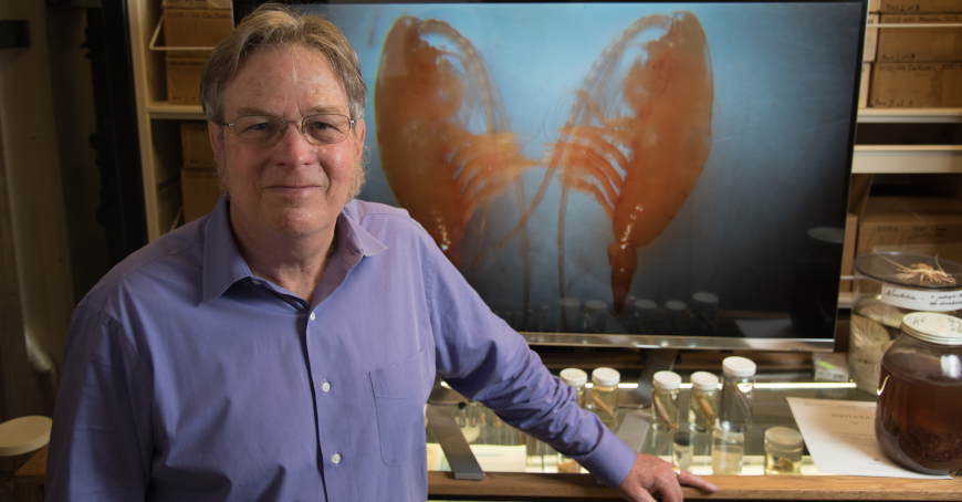 Scripps biological oceanographer and copepod expert Mark Ohman with image of namesake crustacean