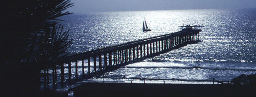 Experience a Full-Moon Walk on Scripps Pier