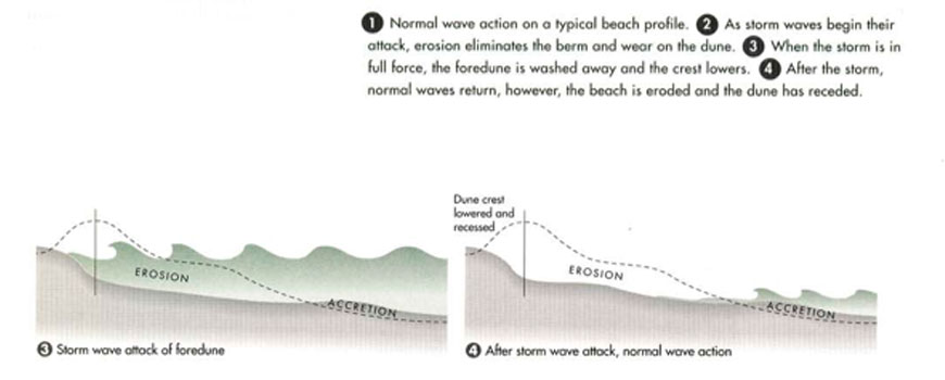 Coastal erosion diagram