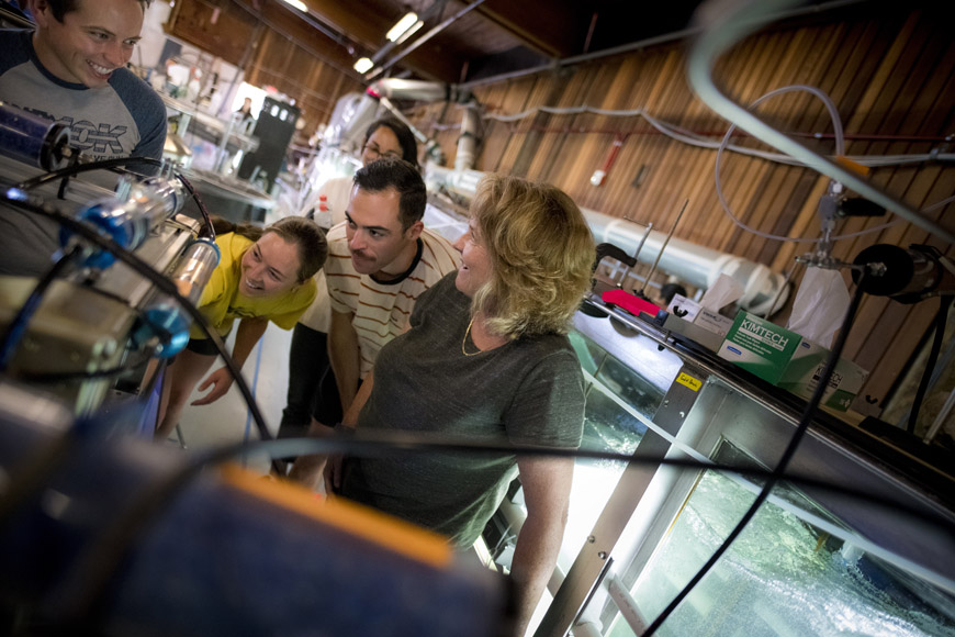 CAICE Director Kim Prather and fellow researchers work on the SeaSCAPE experiment. Photo: Erik Jepsen/UC San Diego
