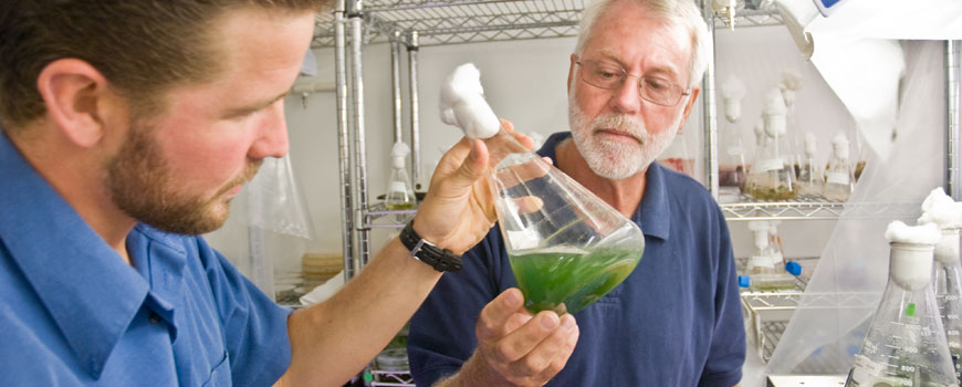 Two researchers in a laboratory examine a beaker containing green liquid.