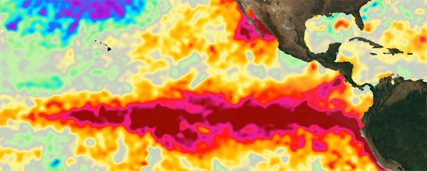Above-average sea surface temperatures during El Niño