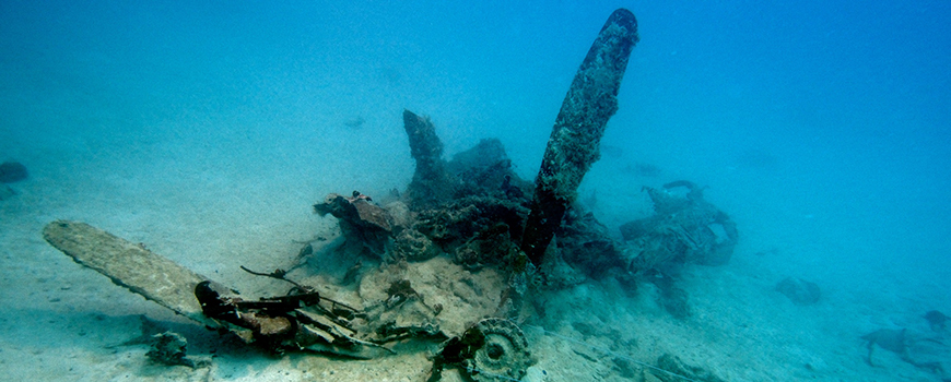 Submerged wreckage of a U.S. Navy Curtiss SB2C Helldiver aircraft. Photo: Eric Terrill/Scripps Oceanography