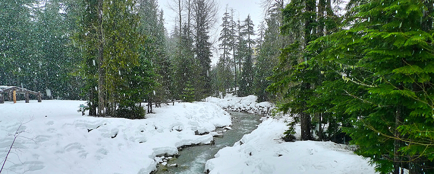 Rain falling on snow. Image credit: Flickr user Malcolm Peacey, CC BY-NC 2.0