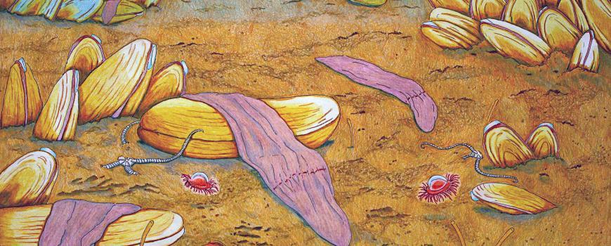 Deep-Sea Worm
