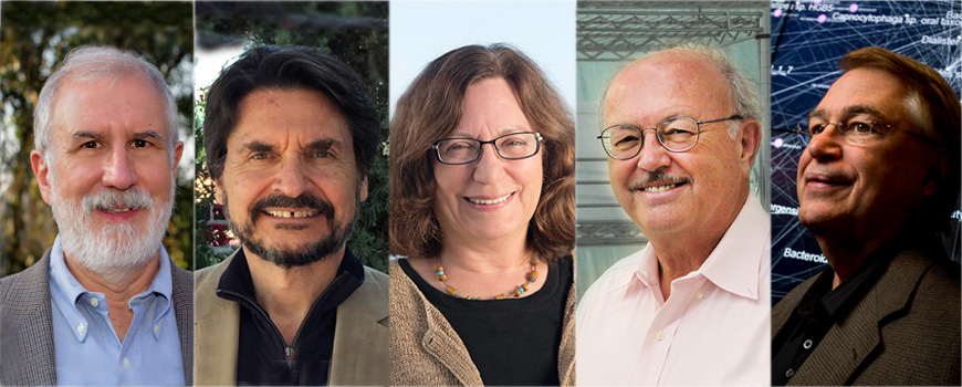 Five new AAAS fellows