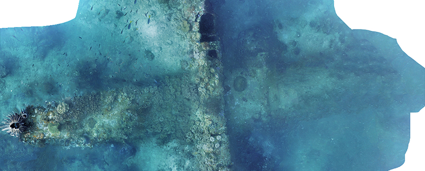 Photomosaic of downed B-25 bomber. Image: Project Recover