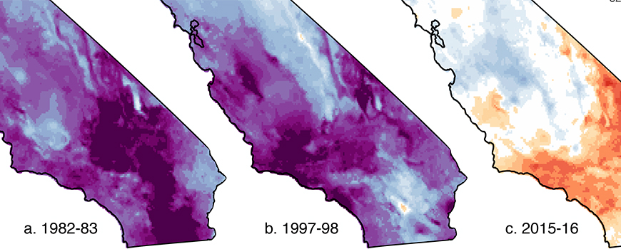 A significantly drier El Niño visited Southern California in 2015-16