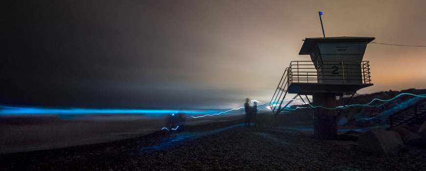 Bioluminescence from a red tide lights the waves blue in San Diego. Photo: Erik Jespsen/UC San Diego Publications