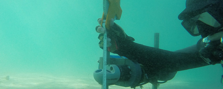 Researcher installs current profiler off Scripps Pier to record internal wave activity. Photo: Greg Sinnett