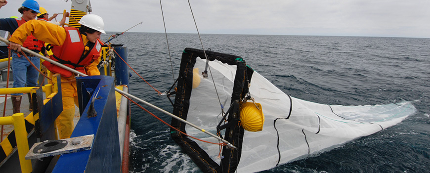A researchers at sea pulls a net back onto a ship