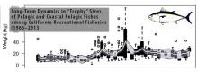 Time series plots of trophy fish weight.