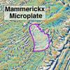Mammerickx Microplate
